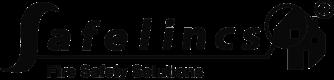 logo-for-safe-lincs-craig-collinson-customer